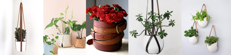 Cuir (pot de fleurs)