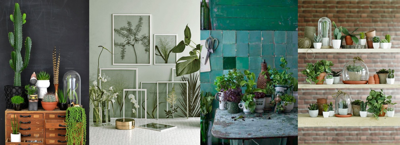 vert-plantes